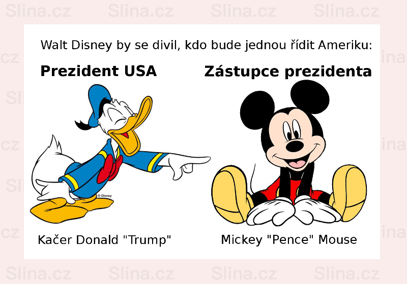 USA – Donald a Mouse