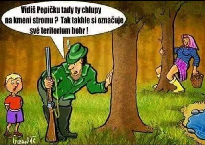 Vtip v lese