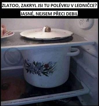 Vtip o polévce v ledničce