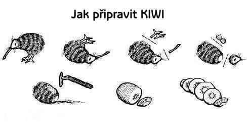 Jak připravit kiwi